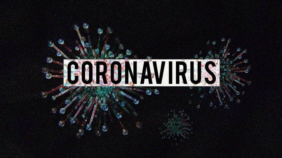 The Wuhan Coronavirus and Companion Pets
