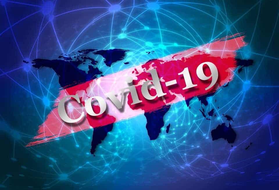 COVID-19 and Companion Pets